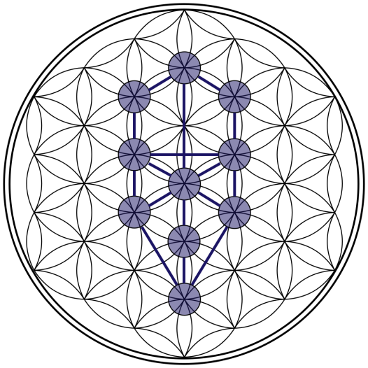 1024px-Tree-of-Life_Flower-of-Life_Stage.svg.png